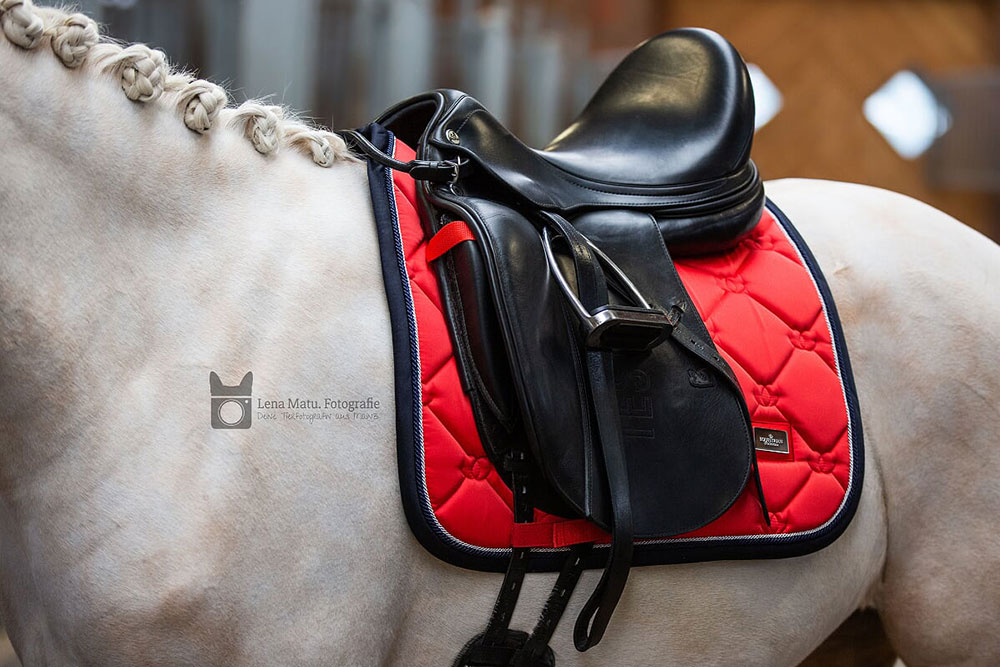 Dressage Saddle Pad Grenadine Cob Equestrian Stockholm