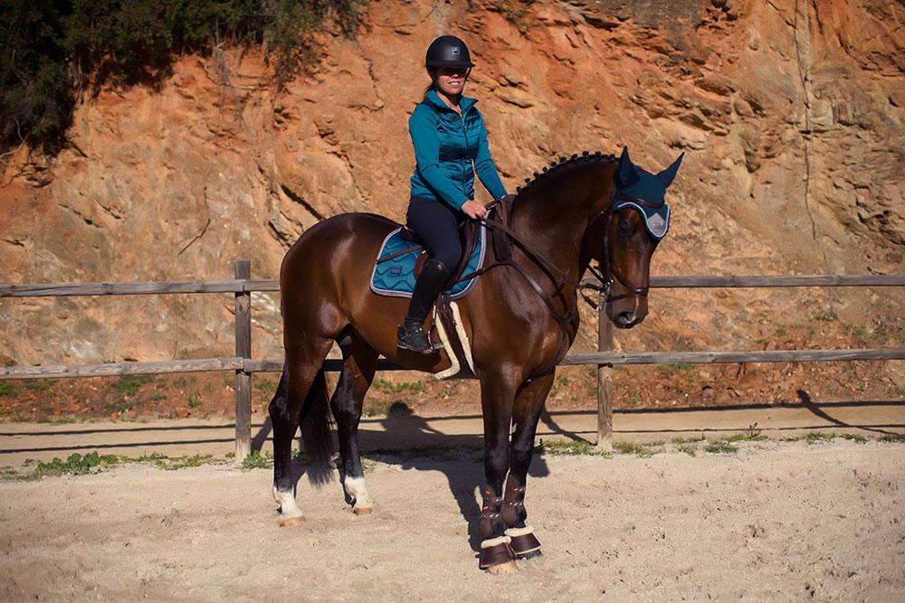 Jump Saddle Pad Moroccan Blue Equestrian Com
