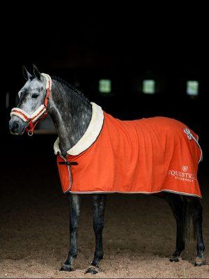Horse Rugs Beautiful Functional