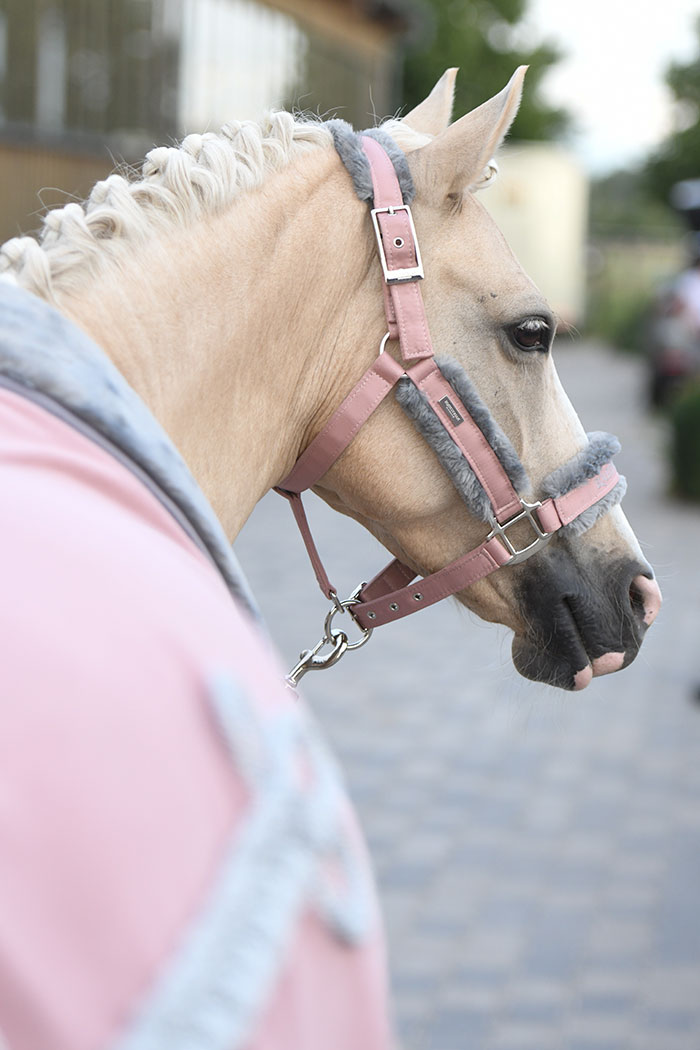 Fur Halter Lead Rope Pink Equestrian Stockholm
